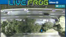 Live Frog Facebook App